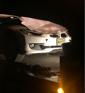 BMW hits Deer